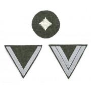Privates' sleeve insignia chevrons on Feldgrau