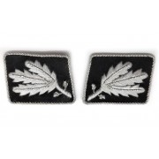 General's collar tabs SS-Brigadeführer